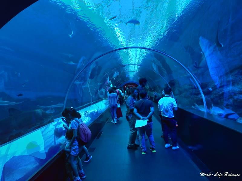 SEA海底隧道