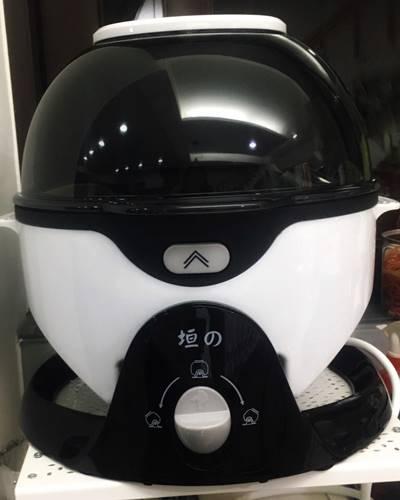 垣戊氣炸鍋