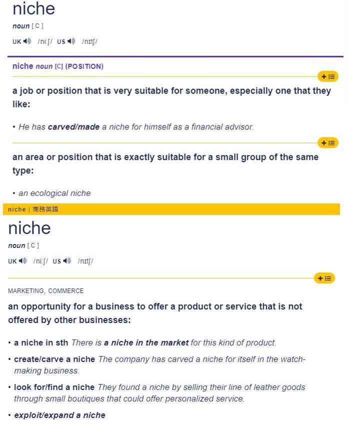 niche利基市場是什麼